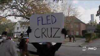 Protestors gather at Senator Cruz's home