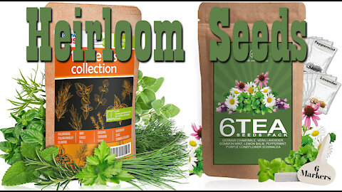 Culinary Herb Collection & Tea Seeds Pack ~ Heirloom Seeds