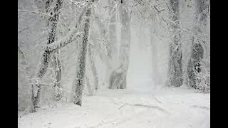 Beautiful seasons winter with music