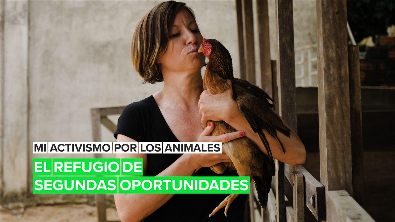 Mi activismo por los animales: El refugio de las segundas oportunidades