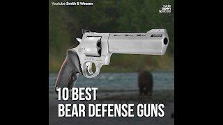 10 Best Bear Defense Guns