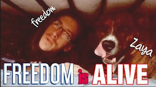 Freedom is Alive! Communist Take Over of America. Coms Check In - Up Date