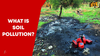 What Is Soil Pollution ?
