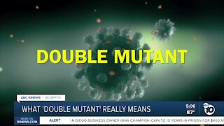 Double Mutant variant from India found in California