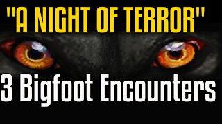 3 True Bigfoot Encounters
