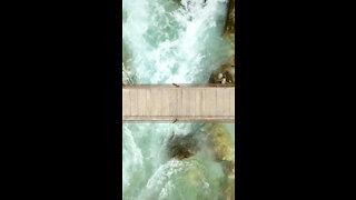 Bridge *