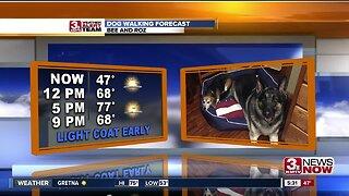 Dog Walking Forecast 4/24/19