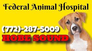 Federal Animal Hospital, Southeast Federal Highway, Hobe Sound, Florida