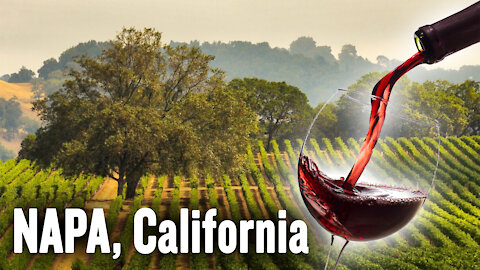 California Wine: The History, Culture, and Art of Wine Making | Jim & David Gianulias