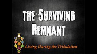The Surviving Remnant