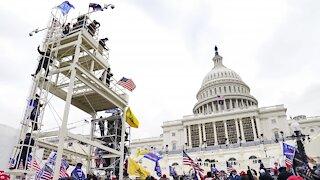 D.C. Police Seek Help Identifying Capitol Rioters