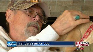 Vietnam Veteran gets service dog