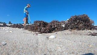 Friends of Palm Beach vigilant about keeping beaches clean