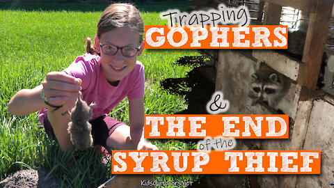 S2:E23 How to Trap Pocket Gophers & The End of the Syrup Thief | Kids Outdoors