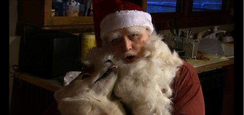 Husky Fur Used to Make Santa Beard
