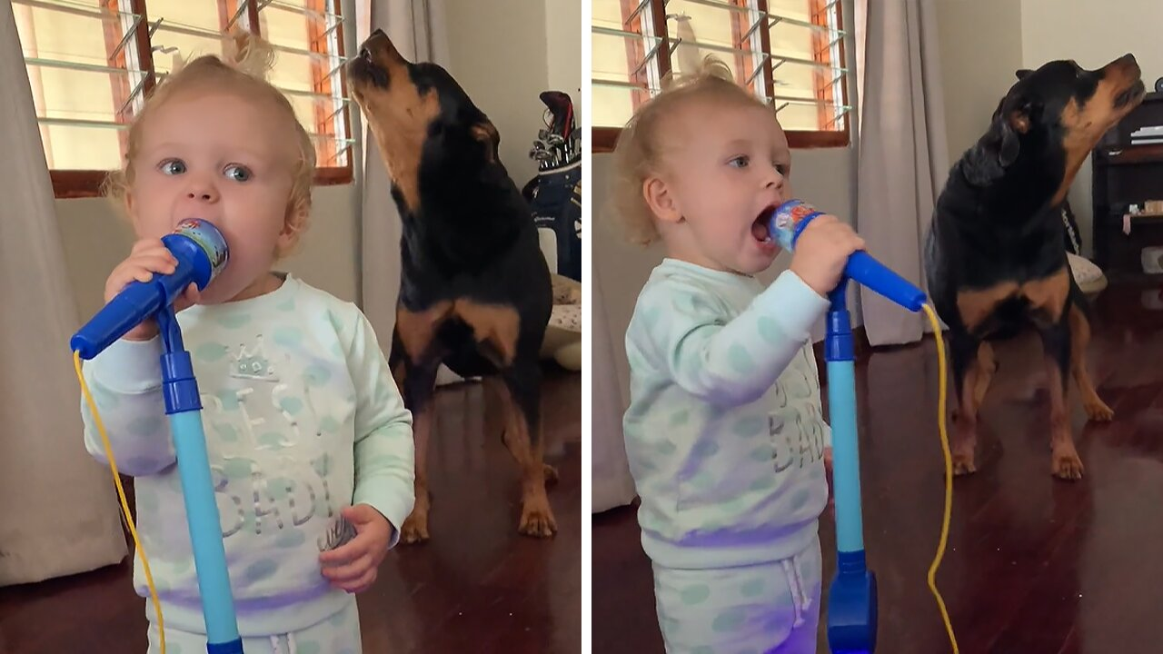 Doggy & baby duet is a must-see performance