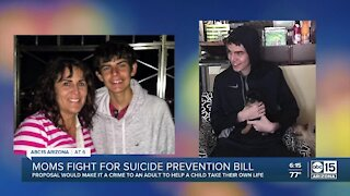 Moms fight for suicide prevention bill