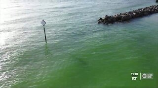 Good Samaritans rescue man from rip current on Upham Beach
