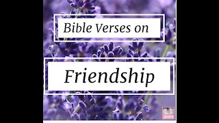 5 Bible verses on friendship part 9//bible verses for friends//bible verses for friendship#short