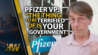 """PFIZER VP: """"THE THING TO BE TERRIFIED OF IS YOUR GOVERNMENT"""""""