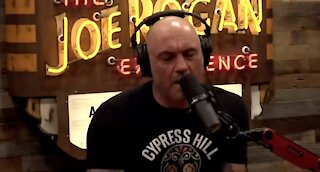 Joe Rogan Exposes the Non-Logic-Based Jackassery of CNN Coorespondant Over Vaccinating Kids
