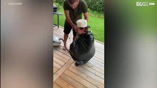 Nouveau challenge: il suffit d'un sac et d'un aspirateur
