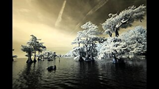 Infrared Photography with Bob Barbour on Sebastian River, Florida