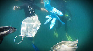 Liberals are polluting the oceans with face masks