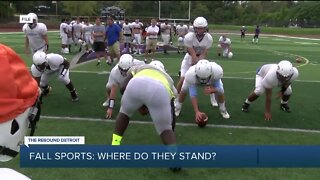 Fall sports: Where do they stand?