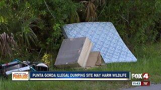 Neighbors say illegal dumping site threatens wildlife