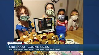 Valley Girl Scouts help support local nonprofit