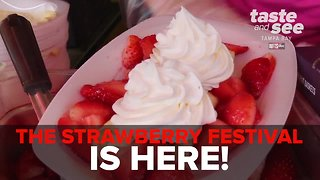 Florida Strawberry Festival 2019 returns to Plant City | Taste and See Tampa Bay