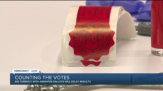 Michigan Primary Election: Counting the votes