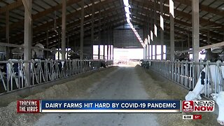 Dairy Farms Hit Hard by COVID-19 Pandemic
