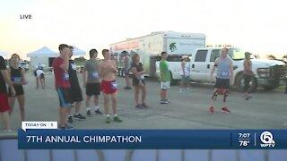 7th Annual Chimpathon returns in person