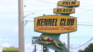 Palm Beach Kennel Club turns 89, 40 new workers needed for fall season expansions