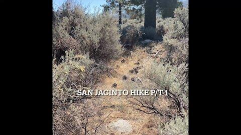 Southern California San Jacinto Idyllwild Mountain Hike