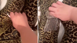 Girl removes old skin from the snake