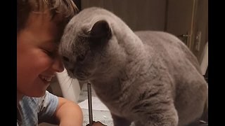 Affectionate cat makes boy's homework very difficult to do