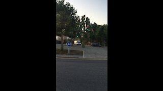 Crazy Traffic Lights!