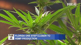 New laws go into effect in Florida July 1st