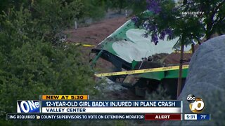 12-year-old girl badly injured in small plane crash