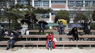 South Korea Reports No New Domestic Coronavirus Cases