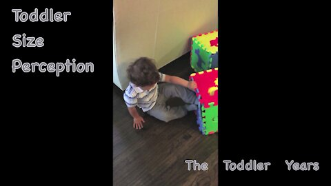 Toddler Size Perception