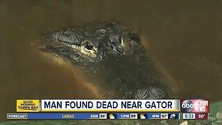 Deputies investigating body found near alligator in Fort Meade