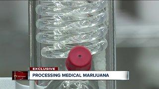 Medical marijuana processor breaks ground