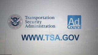 Crimes Of The TSA Agents