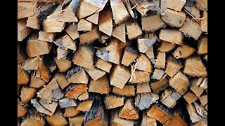 Part 73 Firewood When You Can't Buy or Sell