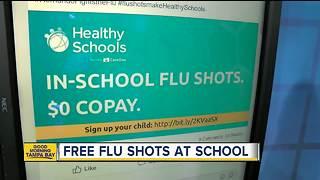 Hernando County Schools offering free flu shots