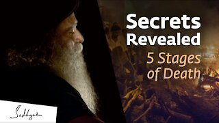 Secrets Revealed: 5 Stages of Death